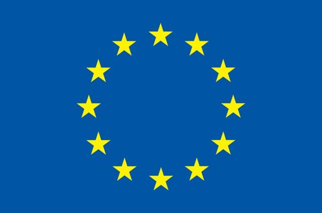 EU  flag web